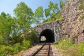 Old railroad tunnel — Stock Photo