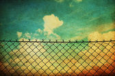 Vintage image with fence netting — Stock Photo