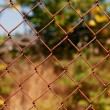 Mesh fence - Stock Photo