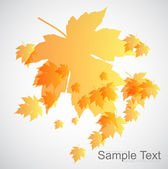 Beautiful Autumn background — Stock Vector