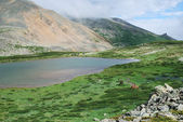 The alpine lake among mountains, Russia, Gorny Altai — Stock Photo