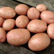 Harvested potato tubers — Foto Stock