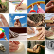 Stock Photo: Human hands collection
