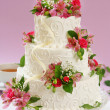 Beautiful cake — Stock fotografie