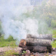 Smoke. Campfire. — Stock Photo