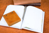 Leather organizers and fountain pen — Stockfoto