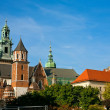 Stock Photo: Wawel Castle