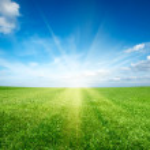 Sunset sun and field of green fresh grass under blue sky — Stock Photo