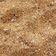 Beach sand of grinded sea shells — Stock Photo #7341292