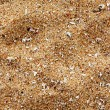 Beach sand of grinded sea shells - Stock Photo