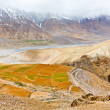 Fields in Spiti Valley - Stock Photo