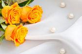 Růže pozadí — Stock fotografie