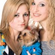 Two smiling young women with dog — Stock Photo #6903290