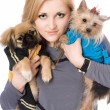 Portrait of lovely blonde with two dogs — Stock Photo #6916021