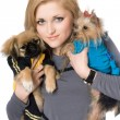 Portrait of pretty blonde with two dogs. Isolated — Stock Photo #6916026