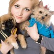 Portrait of beautiful blonde with two dogs. Isolated — Stock Photo #6916029