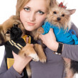 Portrait of attractive blonde with two dogs. Isolated — Stock Photo #6916033