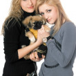 Two beautiful young women with pekingese — Stock Photo