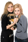 Two pretty young women with pekingese — Стоковое фото