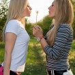 Two young blonde — Stock Photo