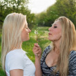 Two pretty young blonde — Stock Photo