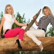 Two blonde sitting on a tree branch — Stock Photo #7385111