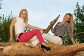 Two beautiful blonde sitting on a tree branch — Stock fotografie