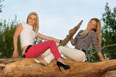坐在树枝上的两个美丽金发女郎 — 图库照片