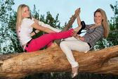 Two smiling blonde sitting on a tree branch — Stock Photo