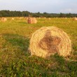 Hay Bales with girl shadow — Stock Photo