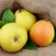 Ripe yellow pears — Stock Photo