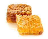 Honeycomb close up — Stock Photo