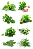 Collage of green — Stockfoto