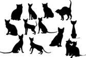 Doce gatos siluetas. ilustración vectorial — Vector de stock