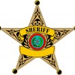 Sheriff badge — Stok Vektör #6859361