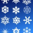 Twelve snowflakes — Stock Vector