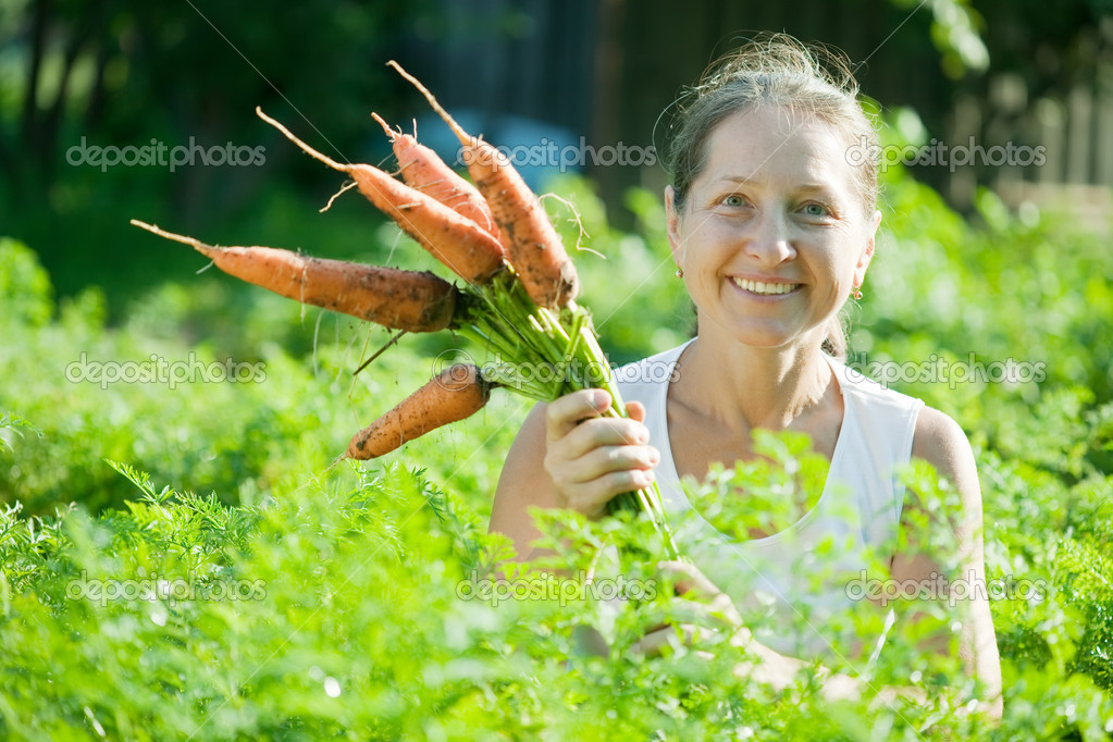 Mature woman  picking carrot in plant  Stock Photo #6813989