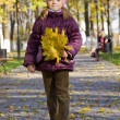 Girl walking in autumn park — Stock Photo
