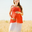 Pregnant woman  in summer  field — Stock Photo