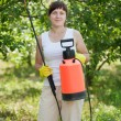 Working woman with garden spray — Stock Photo #6854746