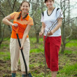 Women planting tree at orchard — Stock Photo #6854870