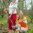 Two female gardeners planting tree — Stock Photo #6854872