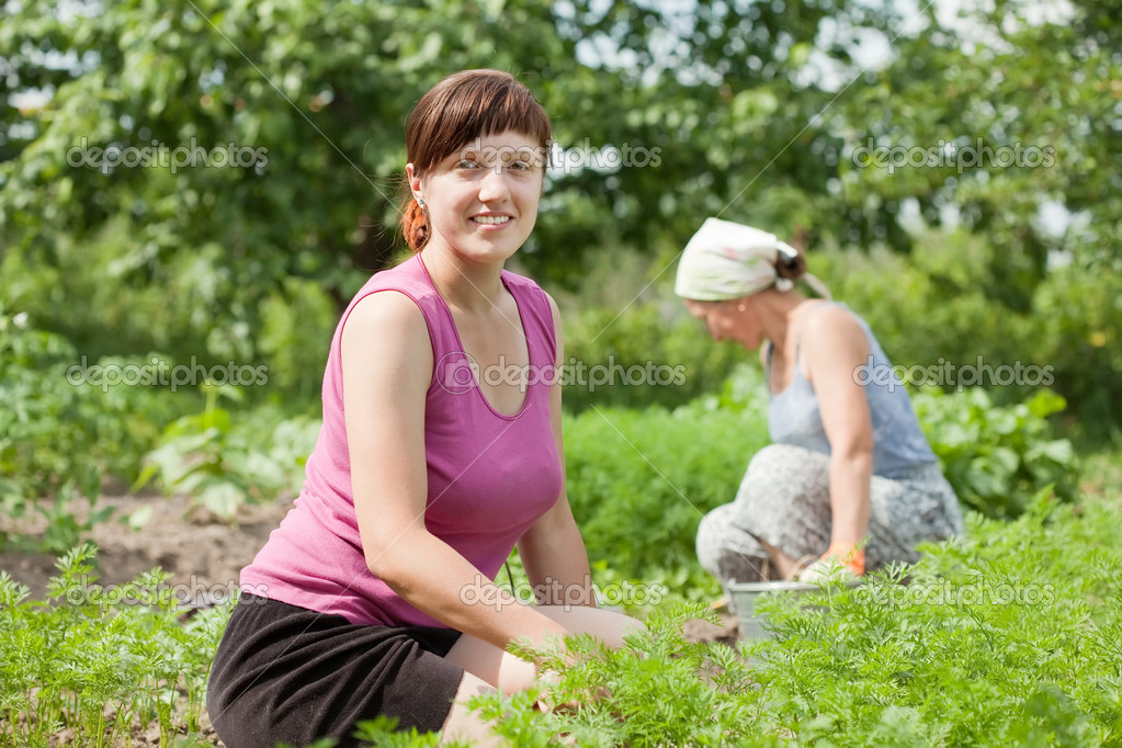 Two women working in her vegetable garden — Stock Photo #6854856