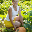 Woman picking pumpkin — Stock Photo #6875590