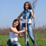 två kvinnor plantera träd — Stockfoto