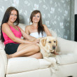 Stock Photo: Women with labrador retriever on sofa
