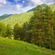 Altai mountains. Siberia — Stock Photo