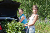Women making birch branches — Stock Photo