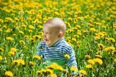 Seven months baby sitting in meadow — Stock Photo