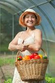 Mulher com vegetais colhidos em estufa — Foto Stock